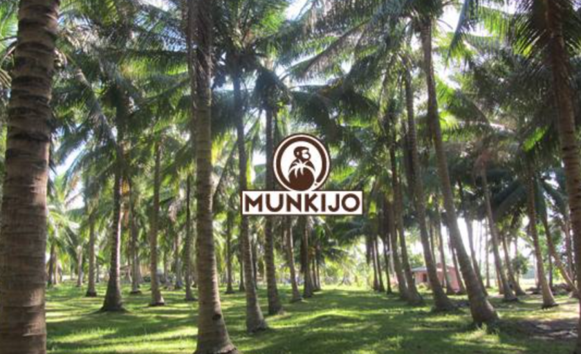 Munkijo Organics: Cracking Open the Boundless Potential of Coconuts