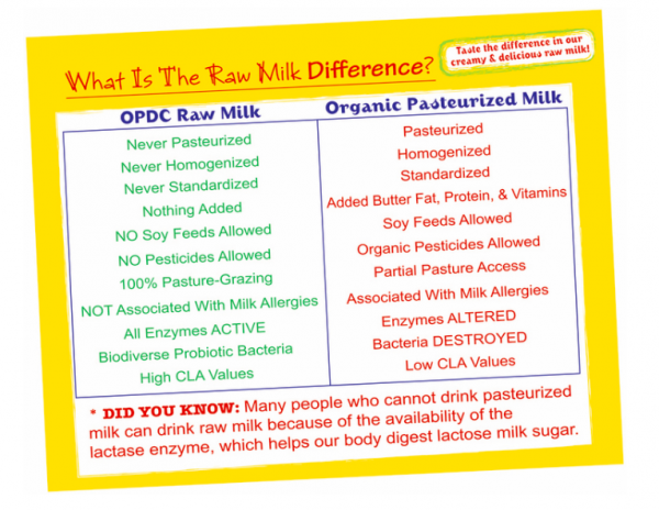 The Raw Milk Difference - Organic Pastures