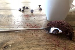Triple Chocolate Protein Mug Cake and Sunwarrior GIVEAWAY!